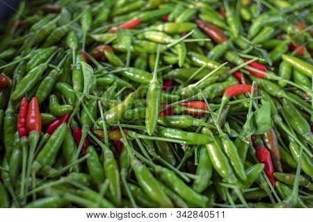 Food Product Color Red Green Chilli Pepper