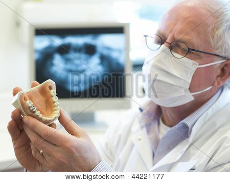 Senoir dentist
