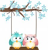 Image representing a two owls in love on a swing, isolated on white, vector design. poster