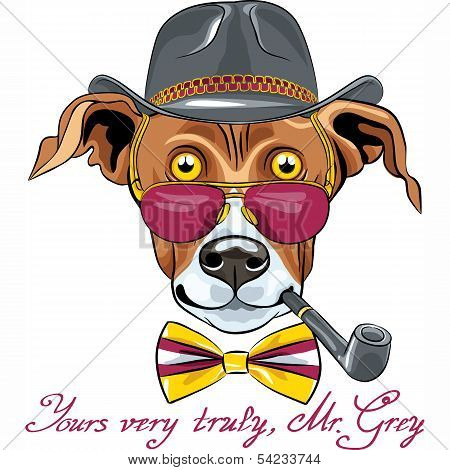 hipster Greyhound Dog in a hat glasses and bow tie with tobacco pipe poster