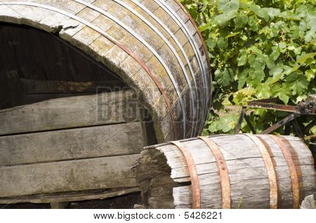 Barrel In Vineyard,