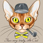 vector color sketch of the red cartoon hipster cat Abyssinian breed with flashing amber eyes in a gray hat bow tie with tobacco pipe poster