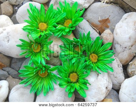 Alphabet Letter G in Green Flowers