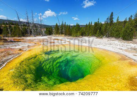 Morning Glory Pool in Yellowstone NP,USA