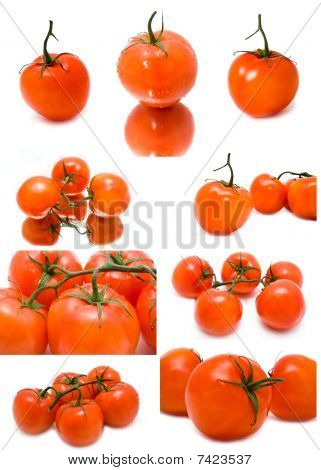 Fresh Juicy Tomatoes On A White Background