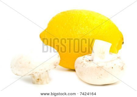 Fresh Mushrooms On A White Background
