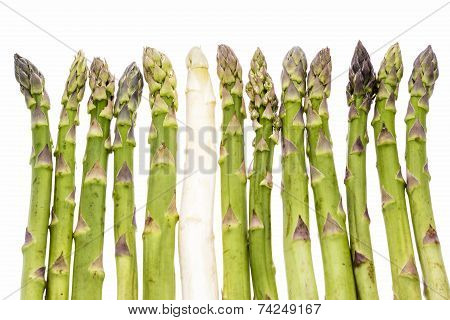 One White Asparagus Spear Among Twelve Green Ones