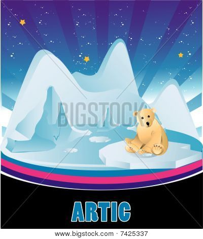 artic vector illustration