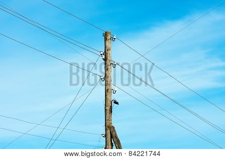 Power Pole