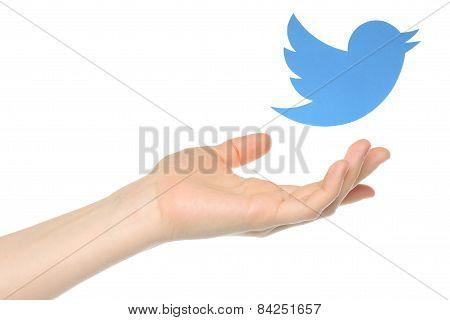 KIEV UKRAINE - JANUARY 05 2015: Hand with Twitter bird