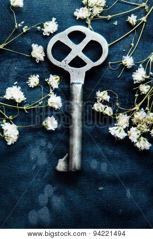 The silver key with flowers
