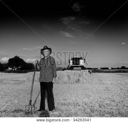 Old Farmer At Harvest