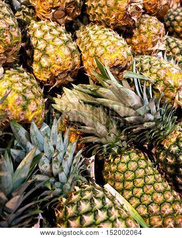 Ripe organic pineapple on shelf just ready for sale