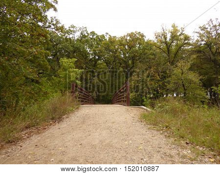 A narrow walking bridge over a river in a state park in Minnesota.