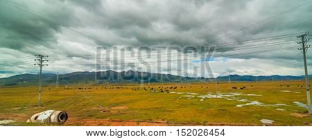 The China Inner Mongolia natural grassland, China.
