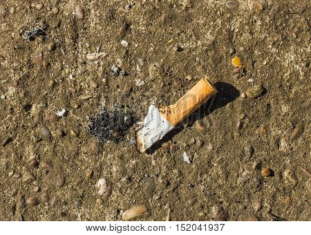 stubbed out cigarette butt on a concrete background