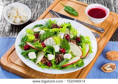 Salad Of Apple, Spinach,  Mozzarella, Lettuce Leaves, Caramelized Walnuts, Cranberry