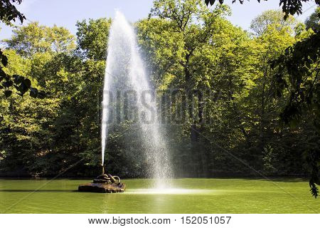 Beautiful bright day fountain green landscape nature park pond sunny.