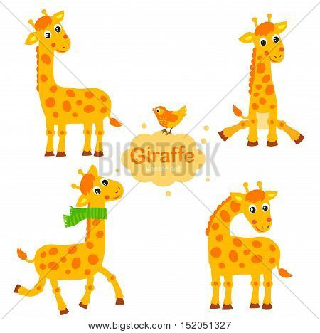 Cute Giraffe Vector Set. Collection Giraffe In Different Poses. Funny Characters Set. Cartoon giraffe in children style.