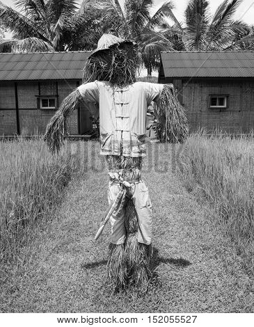one black and white scarecrow standing in front of the farmer house