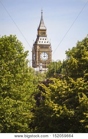 Clock face on the famous landmark clock tower known as Big Ben in London, England visible through the trees of a London park.