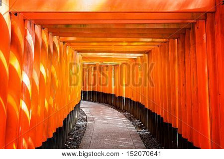 Sunlight streams through the Torii gate passageway at the Fushimi Inari Shrine in Kyoto, Japan.