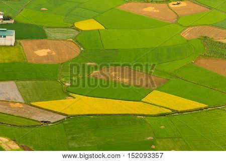 BAC SON, VIETNAM - April 17: Colorful rice field in valley in Bac Son, Lang Son, Vietnam