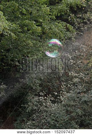 Soap Bubble and water drops splash in front of the forest