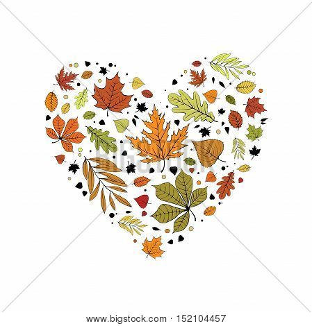 Colorful red, green, orange and yellow autumn leaves heart design on white background.