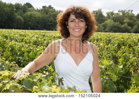 Woman Middle Aged, Winemaker, In Vineyard During Wine Harvest Season