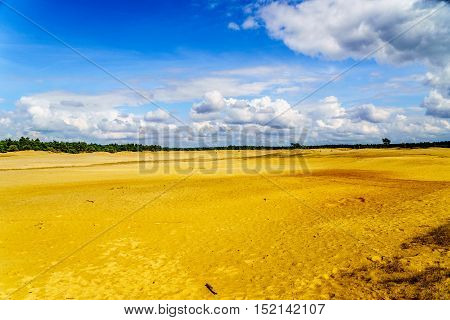 The mini desert of Beekhuizerzand on the Veluwe in the Netherlands in the province of Gelderland. It is the largest sanddrift area in Europe