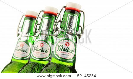 POZNAN POLAND - OCT 12 2016: Grolsch Premium Pilsner - known internationally as Grolsch Premium Lager is the flagship beer of Dutch Grolsch Brewery part of the SABMiller group since 2008