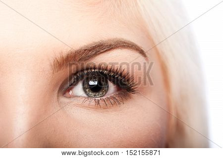 Beauty Eye And Eyebrow