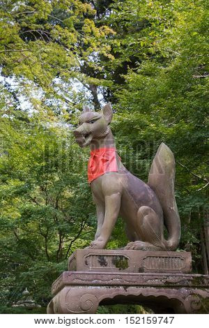 Kyoto Japan - September 17 2016: Fushimi Inari Taisha Shinto Shrine. Kitsune the brown fox messenger and server of God Inari holds a magic ball in its mouth and sports a red apron. Against green tree foliage.