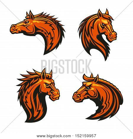Wild horse and angry mustang stallion mascots with head of brown horse with alert ears and fiery mane, adorned by tribal flame ornaments