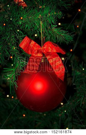 Christmas tree decorated with red bauble hanging. Christmas tree and Christmas decoration.