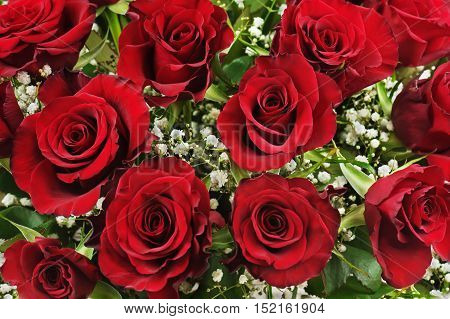 Colorful flower bouquet from red roses.  Closeup.