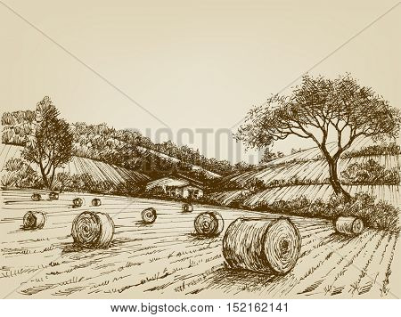 Harvest landscape,farm field and hay bales