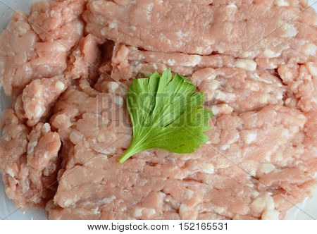 raw minced pork topping Chinese celery in plastic tray