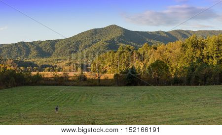 Panoramic picture of Smoky Mountains National Park during Fall Season during sunset