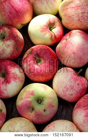 Ripe red apples on the wooden table in the garden closeup