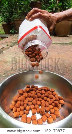 A person pouring pet food in a bowl from a dog's perspective