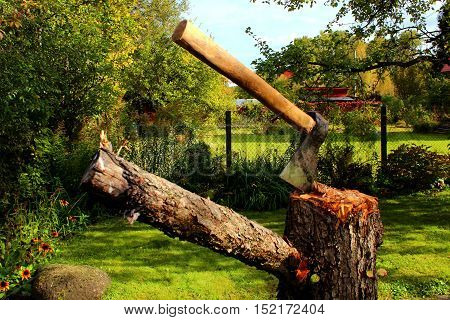 Axe on a stump in a green garden