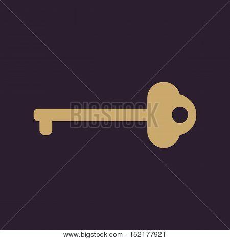 The key icon. Key symbol. Flat Vector illustration