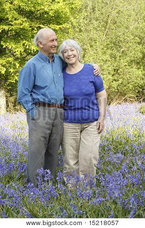 Senior couple in woodland full of beautiful springtime bluebells.