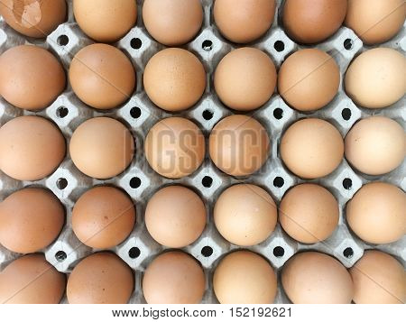 Farm egg in paper container Closeup of many fresh brown eggs in carton tray