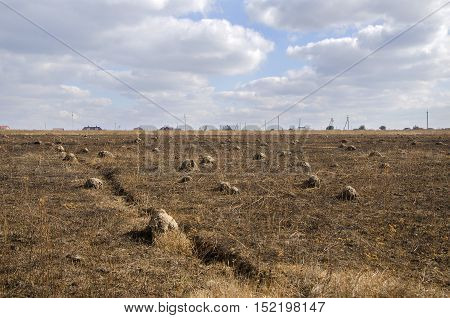 Autumn field and buildings. Agricultural field in autum