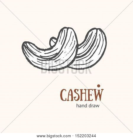 Cashew Card Hand Draw Sketch for Restaurants and Cafes. Snack Food. Vector illustration