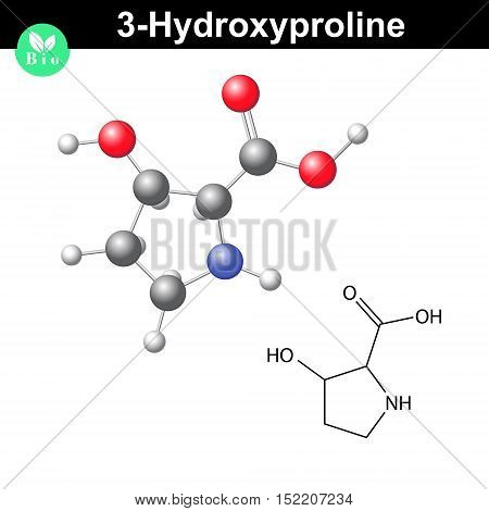 Hydroxyproline non essential heterocyclic amino acid 3 hydroxyproline - main collagen compound 2d and 3d vector illustration isolated on white background eps 8