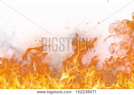 Fire flames on white background, close-up.